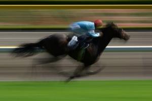 horse racing v2